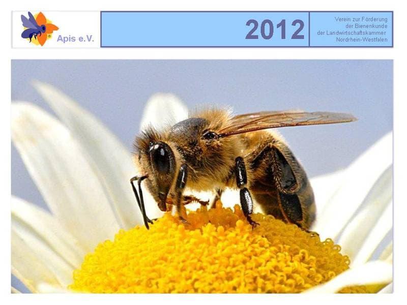 Apis Kalender 2012