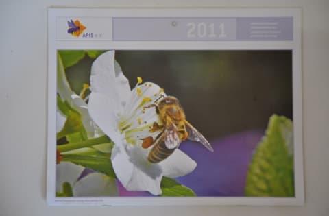 Apis Kalender 2011