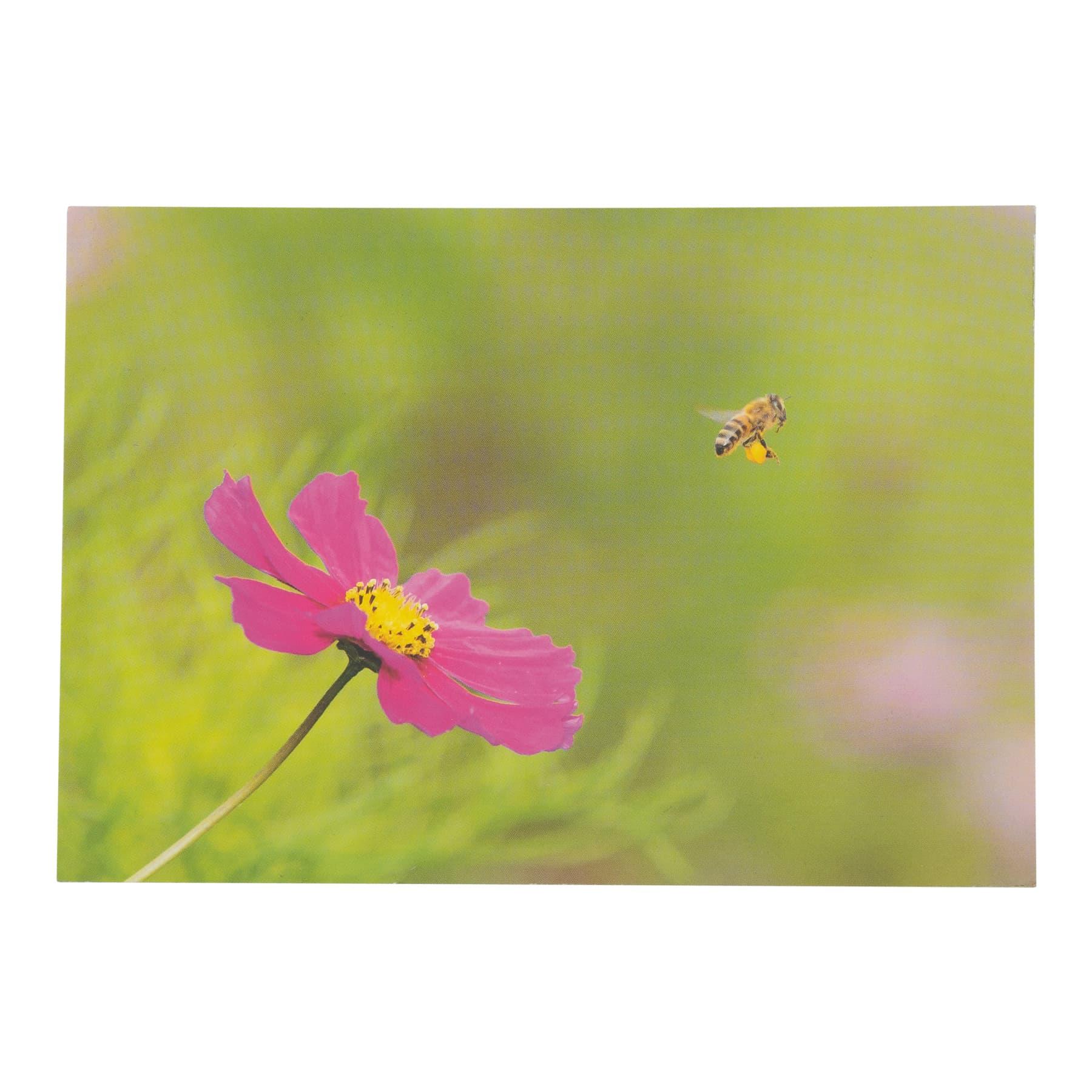 """Postkarte """"Biene mit Blüte Kosmeen"""" 0408"""