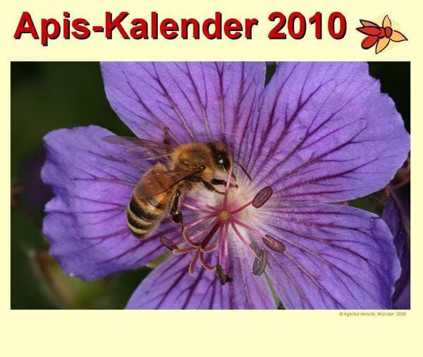 Apis Kalender 2010